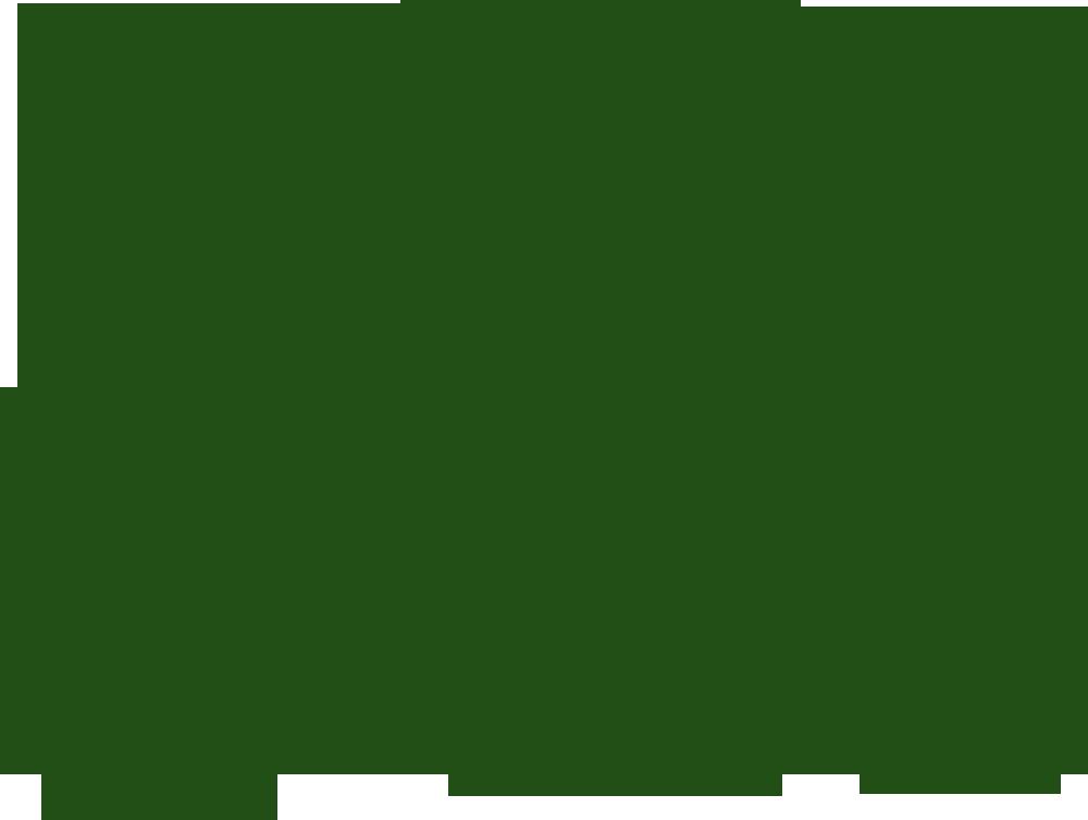 logo-Thuja Sugar & Spice