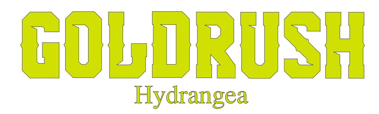logo-Hydrangea Goldrush