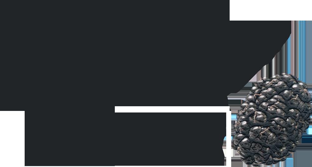 logo-Morus BonBonBerry® Mojo Berry