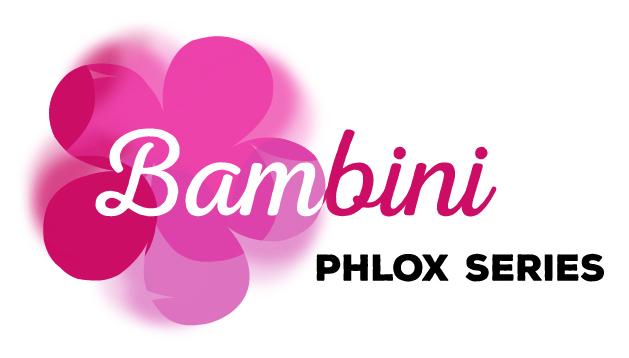 logo-Phlox Bambini® Primadonna