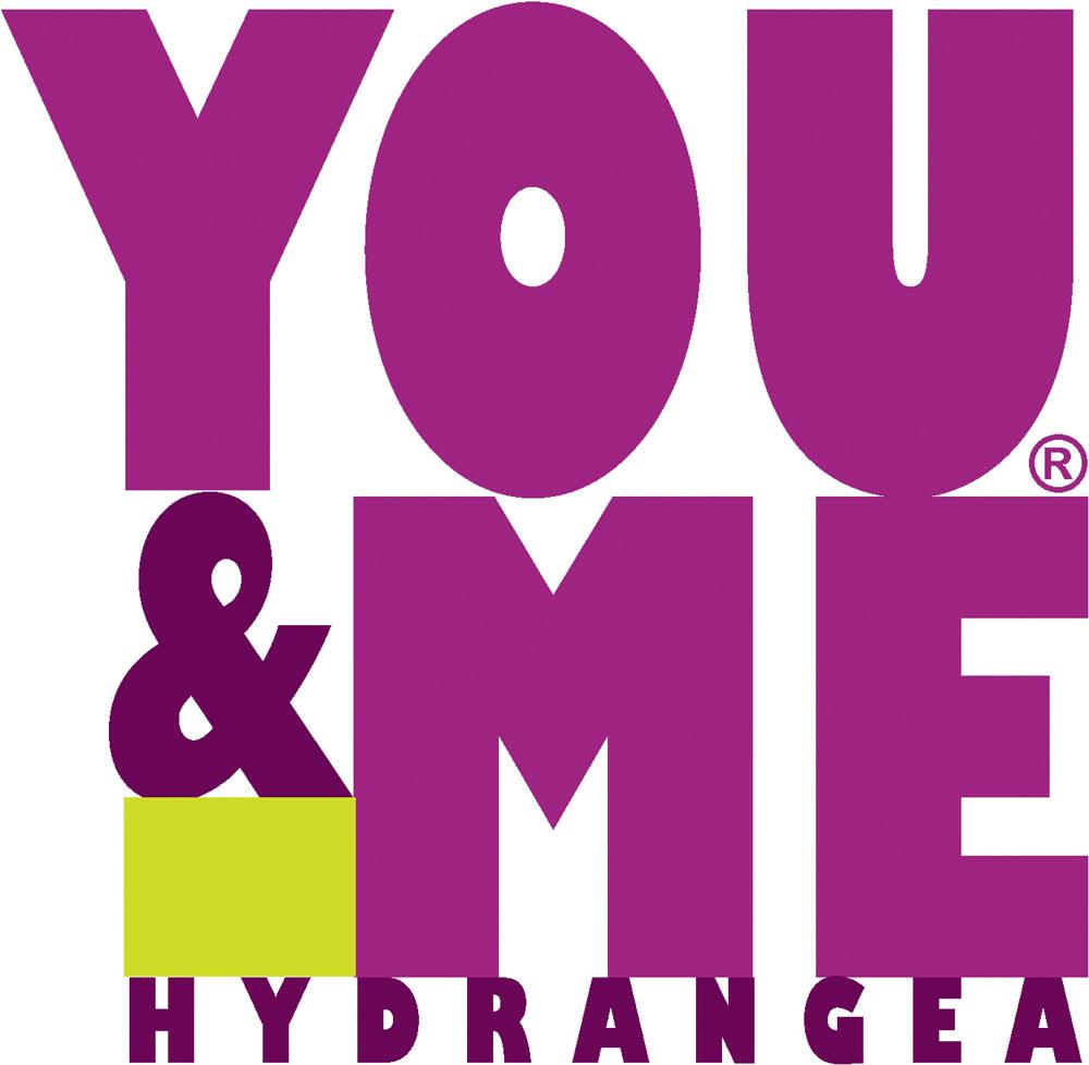logo-Hydrangea You&Me Romance