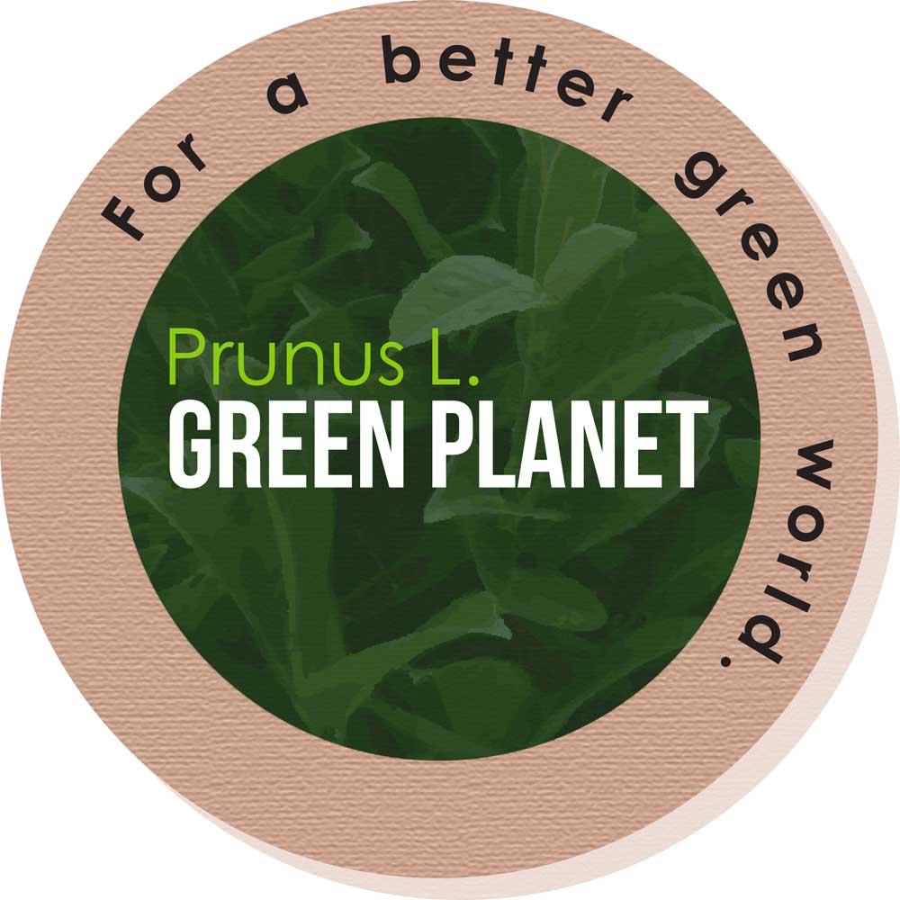 logo-Prunus Green Planet