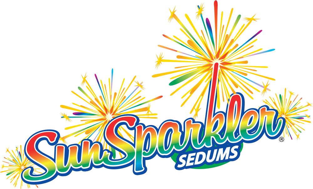logo-Sedum Firecracker