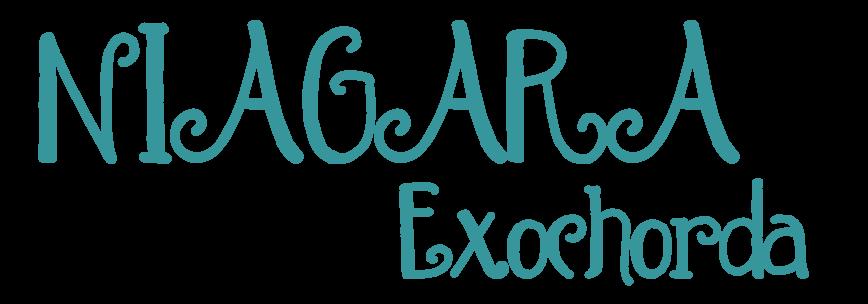 logo-Exochorda Niagara