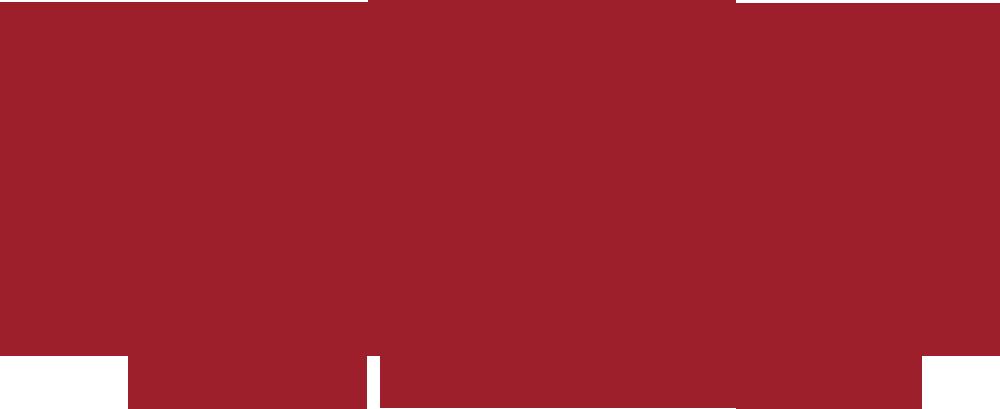 logo-Acer Starfish