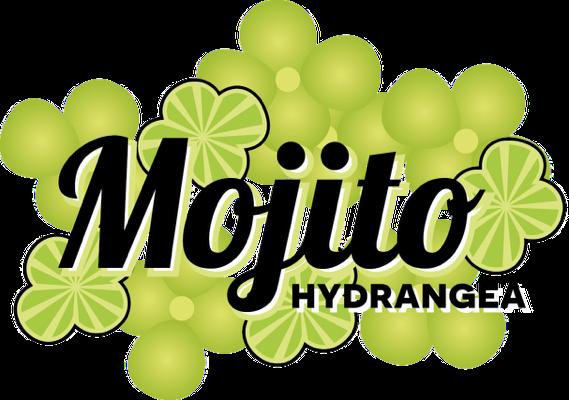 logo-Hydrangea Mojito