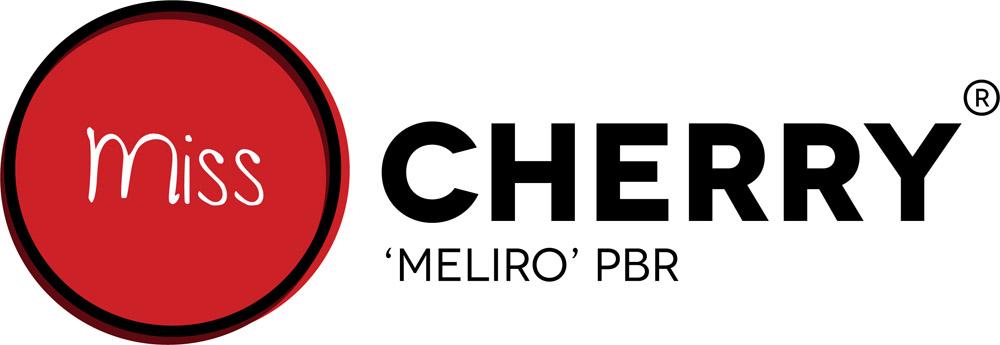 logo-Vaccinium Miss Cherry®