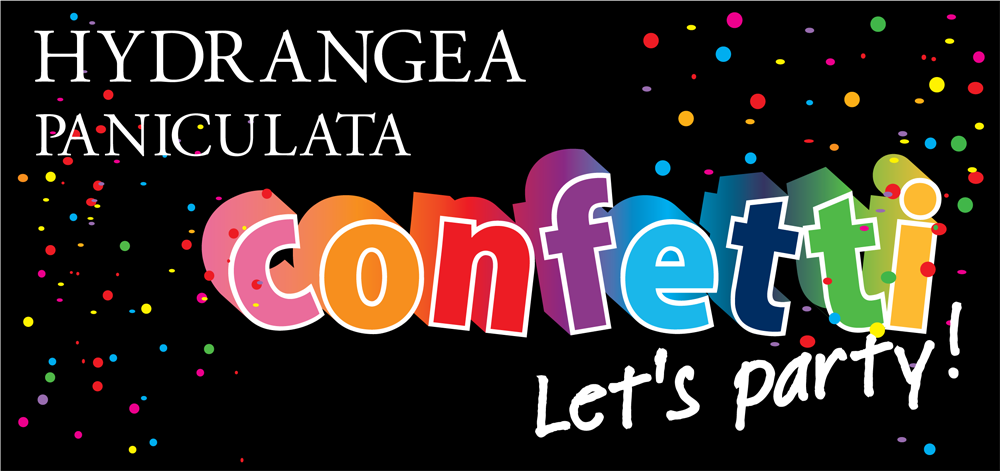 logo-Hydrangea Confetti