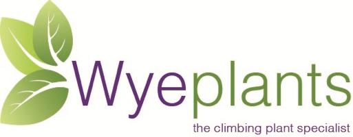 Wyeplants Ltd.