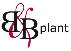 B&B Plant B.V.