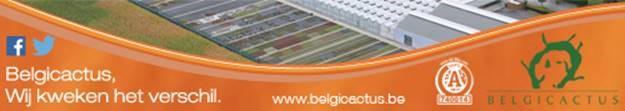 Belgicactus bvba