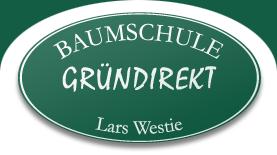 Baumschule Gründirekt