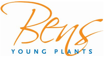 BENS Young Plants