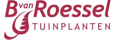 Bart van Roessel Tuinplanten BV