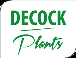 Decock Plants bvba