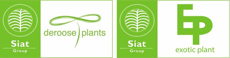 Deroose Plants & Exotic Plant