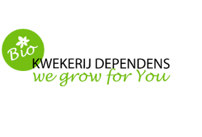 Kwekerij Dependens